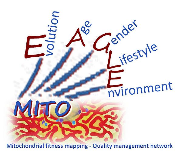 COST Action CA15203 MitoEAGLE